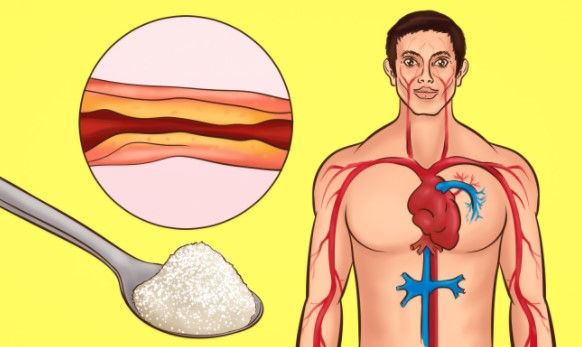 the-best-medicine-against-cholesterol-and-high-blood-pressure