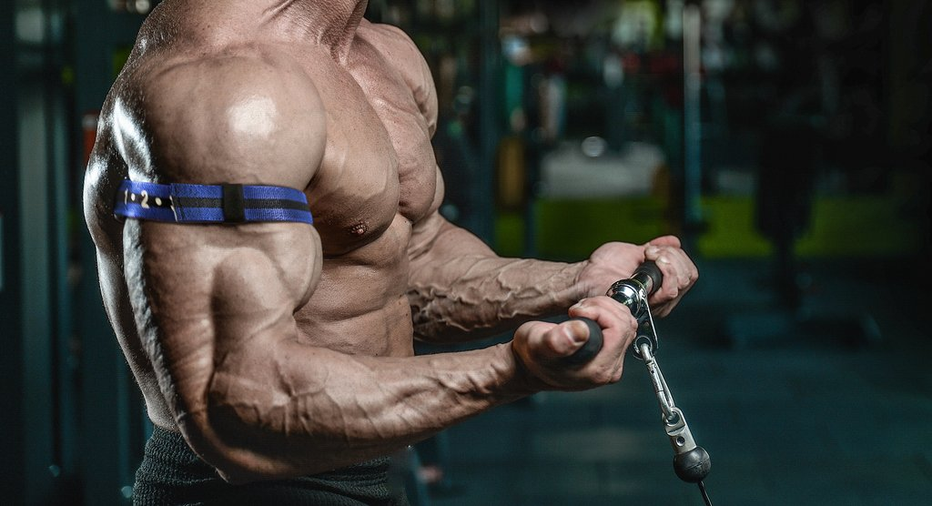 bigger-biceps-workout